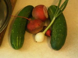 straight 8 cucumbers, green onion and chioggia beets